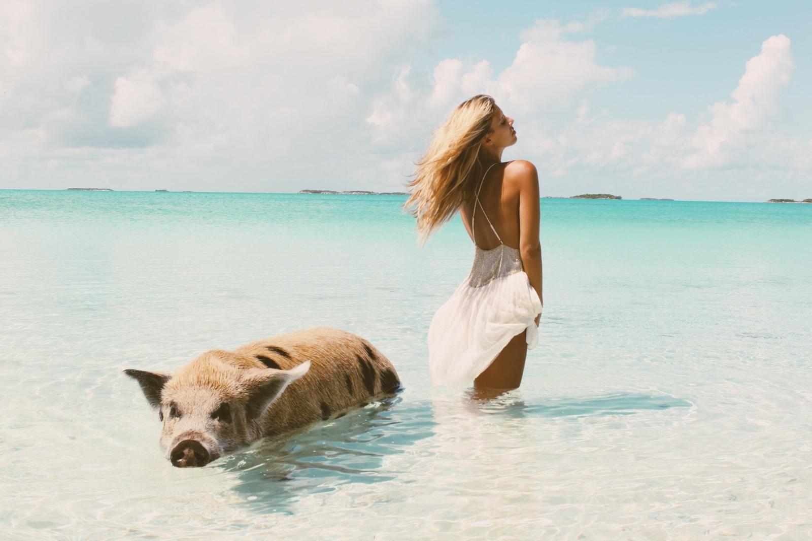 Oakley Island